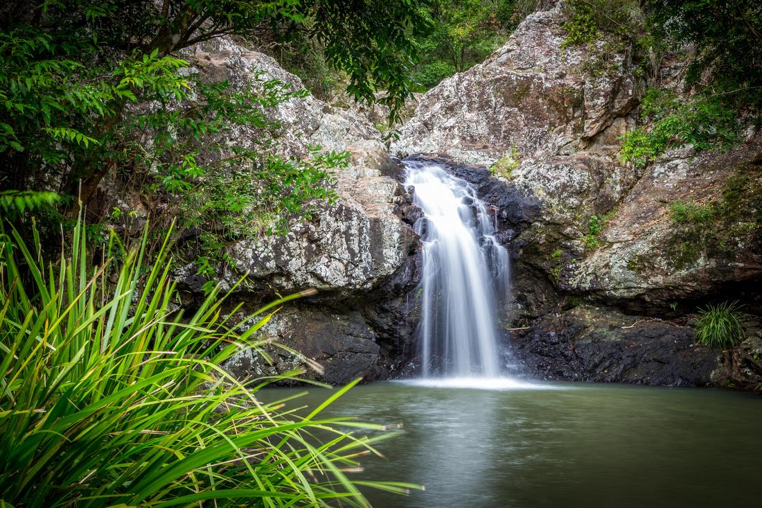 Rock Pools along Kondalilla Falls Circuit