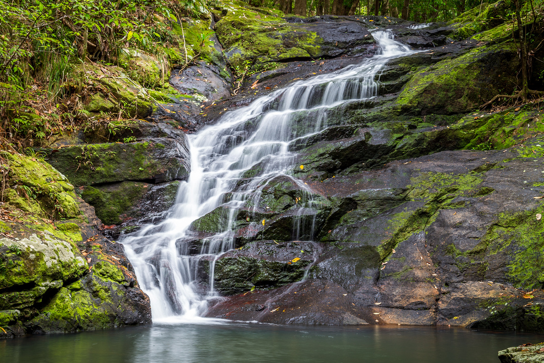 First Falls along Kondalilla Falls Circuit